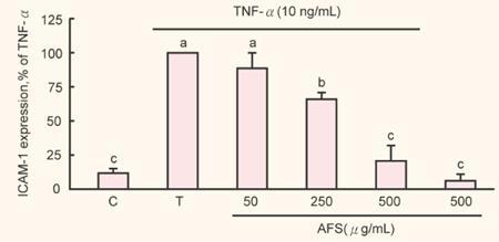 arterymate formulated